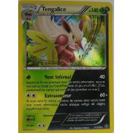 Tengalice Carte Double Energie Holo Rare 140 Pv - 11/114 - XY11