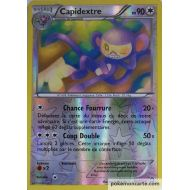 Capidextre Carte Reverse Peu Commune 90 Pv - 91/114 - XY11